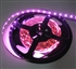 Hot Pink LED Flexible Ribbon Strips | LED Ribbon Tape - Low power consumption, infinite uses.  We manufacture our LED Flexible Ribbon spools and Flex Ribbon Tape to ensure a Quality product and the best possible price to you, our customer!