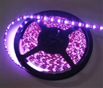 Hot Pink LED Flex Strips -12vdc, Waterproof, Double Density, Blue, High Output - 5M Spool