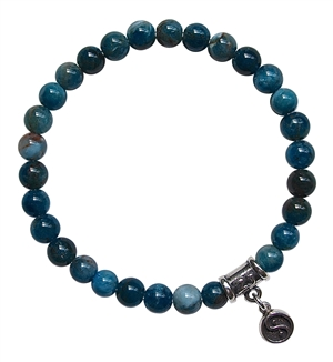 BE INSPIRED - Apatite Healing Crystal Bracelet - zen jewelz