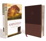 Amplified Study Bible (Revised): 9780310440802