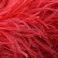 Ostrich Feather Boas - 2 ply