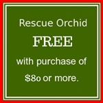 Rescue Orchid, 1 Free with purchase of $60 or more