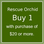 1 Rescue Orchid with purchase of $20 or more.