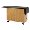 Diversified Woodcrafts Mobile Science Laboratory Unit w/ Flat Top<br> (Diversified Woodcrafts DIV-4121KF)