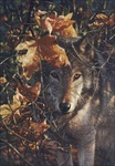 Autumn Eyes, Canvas Limited Edition