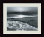 Birds on the Beach by Ansel Adams