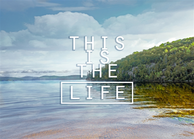 This is the Life by Hal Halli