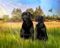 Black Labs - dog by Lois Stanfield