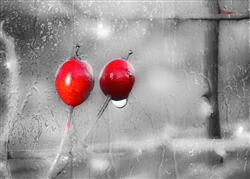 Red Cherries on a Rainy Day by Hal Halli