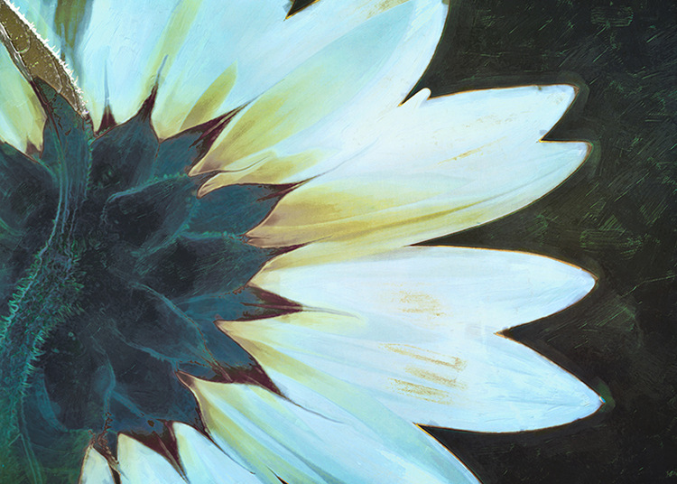 Painted Sunflower by Hal Halli