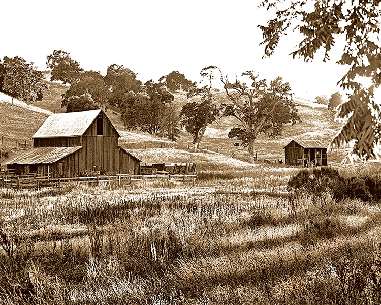 Papa's Barn giclee canvas by Don Schimmel