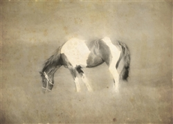 Painted Horse Sepia Canvas by Hal Halli