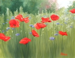 Backyard Poppies 18x24
