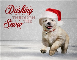Christmas Dashing through the snow