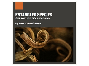 Entangled Species, Applied Acoustics Systems