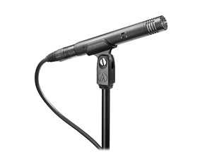 Audio-Technica AT4021 - End-address Cardioid Condenser Microphone