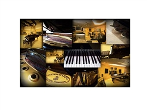 Best Service Galaxy II K4 Single Steinway.