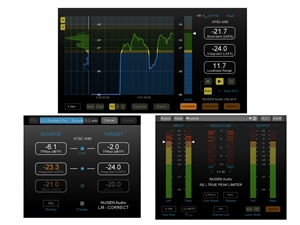 Nugen Audio Loudness Toolkit (Download)