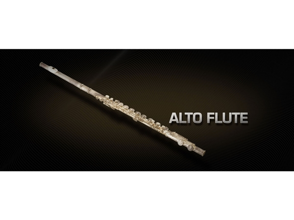 Vienna Symphonic Library Alto flute Full
