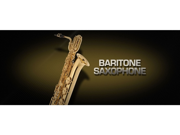Vienna Symphonic Library Baritone saxophone Upgrade to Full