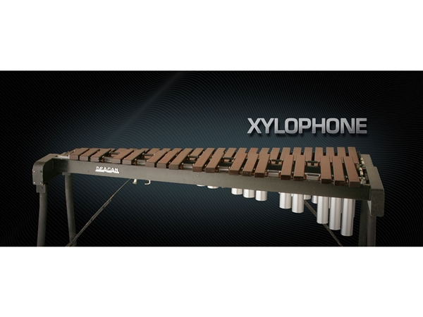 Vienna Symphonic Library Xylophone Standard