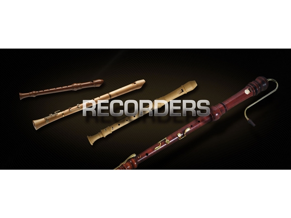 Vienna Symphonic Library Recorders Standard LIbrary