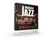 XLN Audio Addictive Drums 2:  Modern Jazz Brushes ADpak