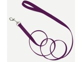 Coastal Single-Ply Nylon Leash Purple 3/4X6ft