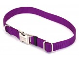 Coastal Adjustable Nylon Collar with Titan Metal Buckle Purple 1X18-26in