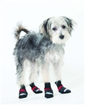 lookin' good! by FASHION PET Extreme All Weather Boots Red in XX-Small