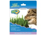 OurPet's Cosmic Kitty Cat Grass