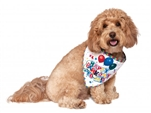 Rubies Birthday Bandana Small to Medium