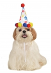 Rubies Boy Paw Print B'day Hat S-M