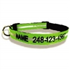 Safety Reflective Dog Collars: Personalized and Embroidered