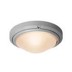 Access Lighting - Oceanus Wet Location Ceiling or Wall Fixture - 20355MGLED-SAT-FST