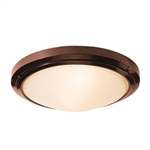 Access Lighting - Oceanus Wet Location Ceiling or Wall Fixture - 20356MGLED-BRZ-FST