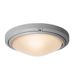 Access Lighting - Oceanus Wet Location Ceiling or Wall Fixture - 20356MGLED-SAT-FST