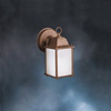 1-Light New Street Series Fluorescent Outdoor Wall Sconce-Tannery Bronze