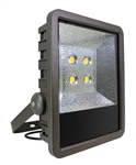 Westgate Mfg LF-120W-TR LED FLOOD LIGHTS WITH TRUNNION