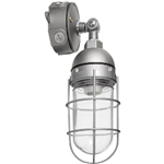Va2Hh100Qt Vp Hid Adjustable 100W Mh Qt Lamp Glass Globe Cast Guard
