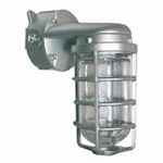 Vbr200Dg-F26277 Vaporproof 26W Cfl 277V Wall Br With Glass Globe Cast Guard