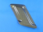 SWINGARM GUARD R NSF250R