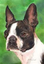 Boston Terrier Garden Flag