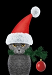 Grouchy Christmas Cat House Flag