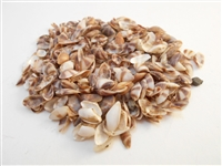 brown white coquina
