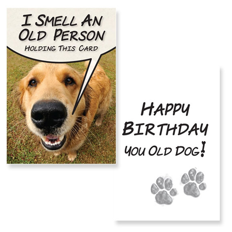Birthday-I Smell An Old Person