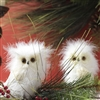 "RAZ IMPORTS 5.5"" FEATHERED WHITE OWLS (SET OF 12)"