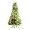 Season's Design 6.5FT Douglas Fir Christmas Tree