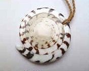 35220 Seal Shell  Necklace