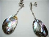 43170-1 Abalone Shell Earring w/925 Silver Hook